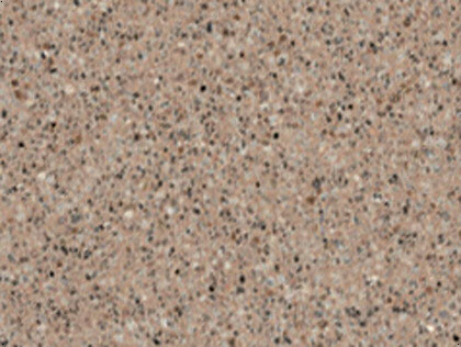 Kalahari Bev United Granite Countertops Pa