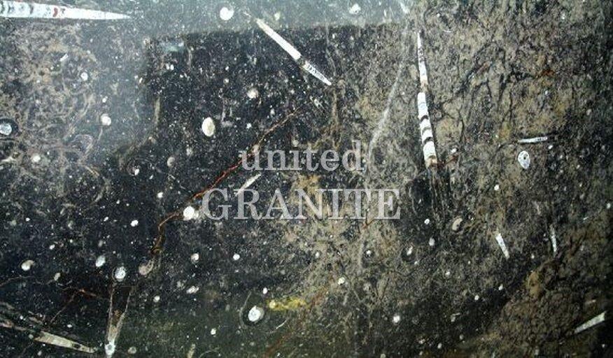 Fossil Brown United Granite Countertops Pa